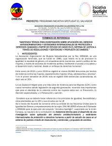 Tdr investigacion sobre aplicación de derecho antidiscriminatorio y estandares de derechos humanos 1a convocatoria