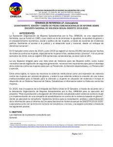 Términos de referencia (2ª. Convocatoria) levantamiento, edición y diseño de piezas comunicacionales de informe sobre encuesta nacional de violencia sexual-digestyc 2019-2020.
