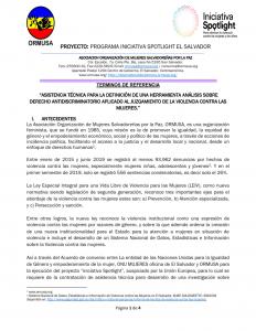 Tdr Asistencia técnica aplicación DAD y EDH herramientas SECJ-CNJ 2a. convocatoria