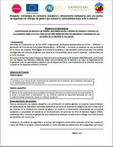 Tdr-Diseño-y-hosting-Observatorio-Seguridad-Ciudadana-REDFEM-1.a-Convocatoria-ormusa