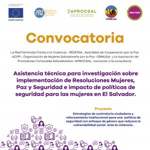 Terminos de referencia investigacion seguridad ciudadana de las mujeres 5a.Convocatoria