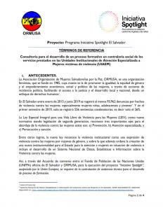 TDR  PROCESO FORMATIVO Y CONSTRCCIÓN DE PLAN DE MONITOREO 1a convocatoria