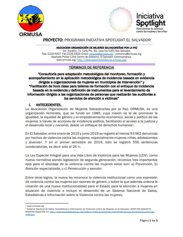 TDR ADAPTACION METODOLOGICA SPOTLIGHT UNFPA 2a. Convocatoria