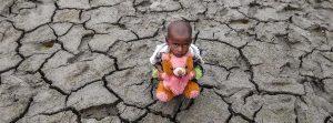 Día Mundial de Lucha contra la Desertificación y la Sequía – 17 de junio