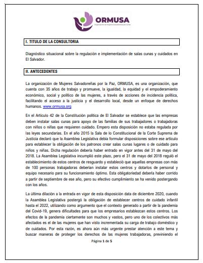 TDR Diagnostico cuidados El Salvador